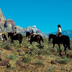 Las Vegas Trail Riding
